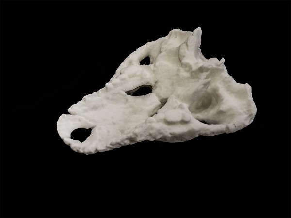 Iharkutosuchus makadii